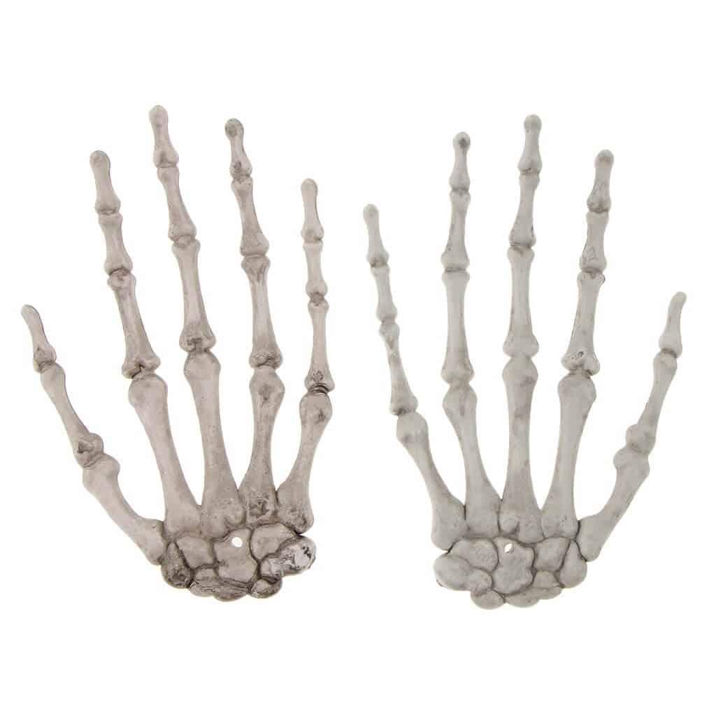 cuantos huesos forman cada mano